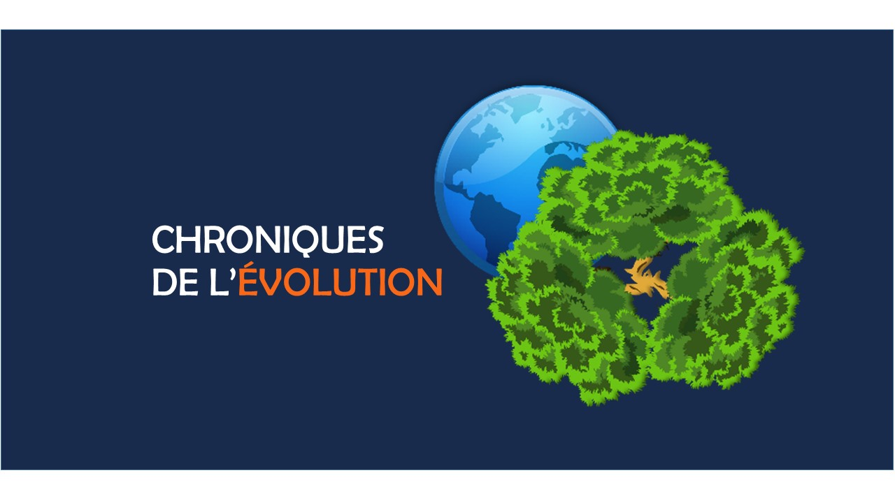 Logo exposition chroniques de l'évolution